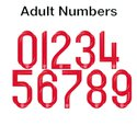 England 2018 Adult Numbers