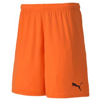 Puma TeamGoal 23 Knit Shorts