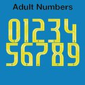 Brazil 2018 Adult Numbers