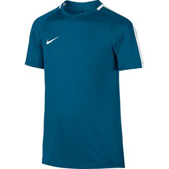Nike Youth Dry Top SS Academy