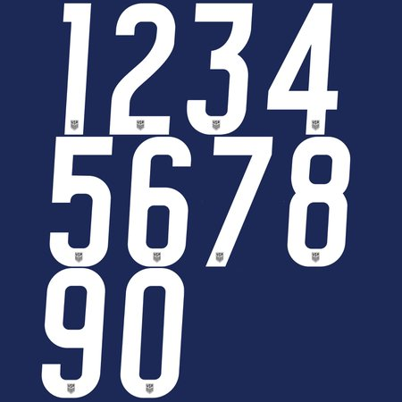 USA 2020 8in Numbers
