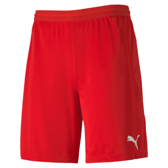 Puma TeamFinal 21 Knit Shorts