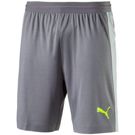 Puma EVOTRG Tech Shorts