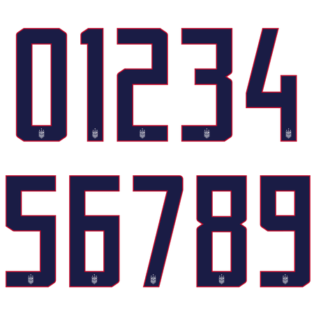 United States 2019 10 Inch 4 Star Number