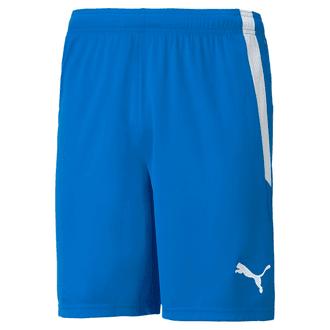 Puma Team Liga 25 Shorts