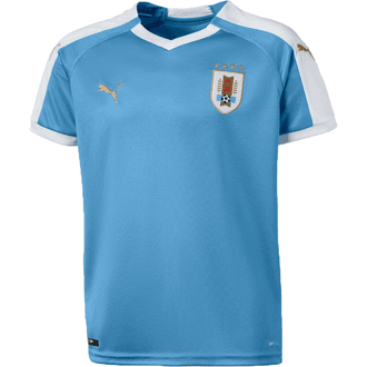 Puma Youth Uruguay Home 2019-20 Replica Jersey