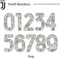 Juventus 20-21 Youth Number