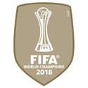 2018 Fifa World Champions Gold Badge