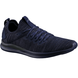 Puma Ignite Flash evoKnit Shoe