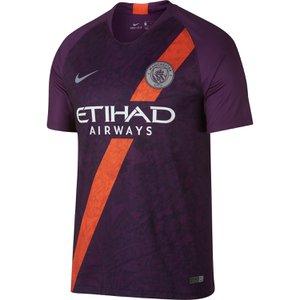 ce1b3995ba1 Nike Manchester City 3rd 2018-19 Stadium Jersey